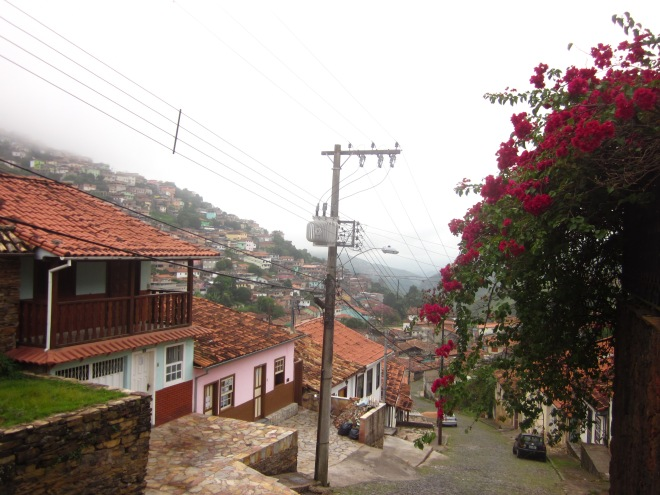 Bougainvilla in full bloom Ouro Preto, Brazil, Apr 2014